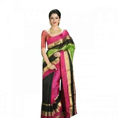 Ahilya Maheshwari Multi Colour Cotton Silk Maheshwari Handloom Saree