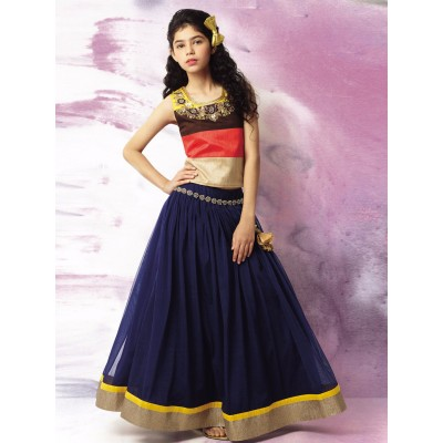 Ugrowth Collection Navy Blue Faux Georgette Hand Worked Stitched Lehenga Choli