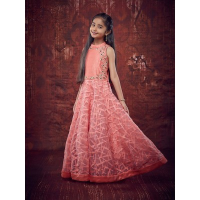 Ugrowth Collection Peach Banglori Silk Embroidered Gown